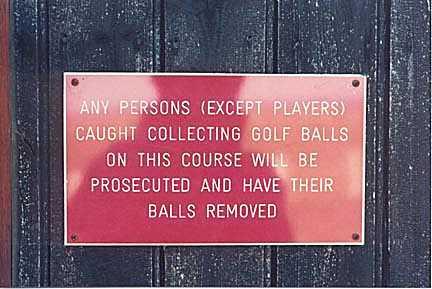balls-taken-golf-course
