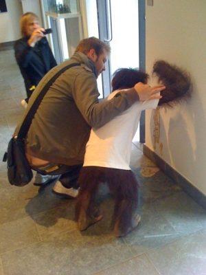 party hard monkey