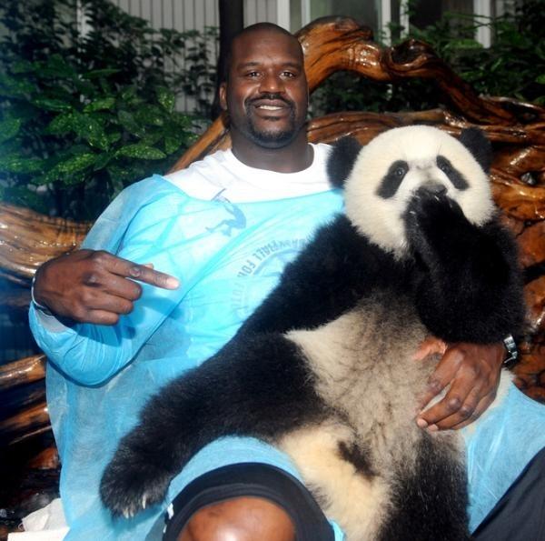 shaq-holding-a-panda