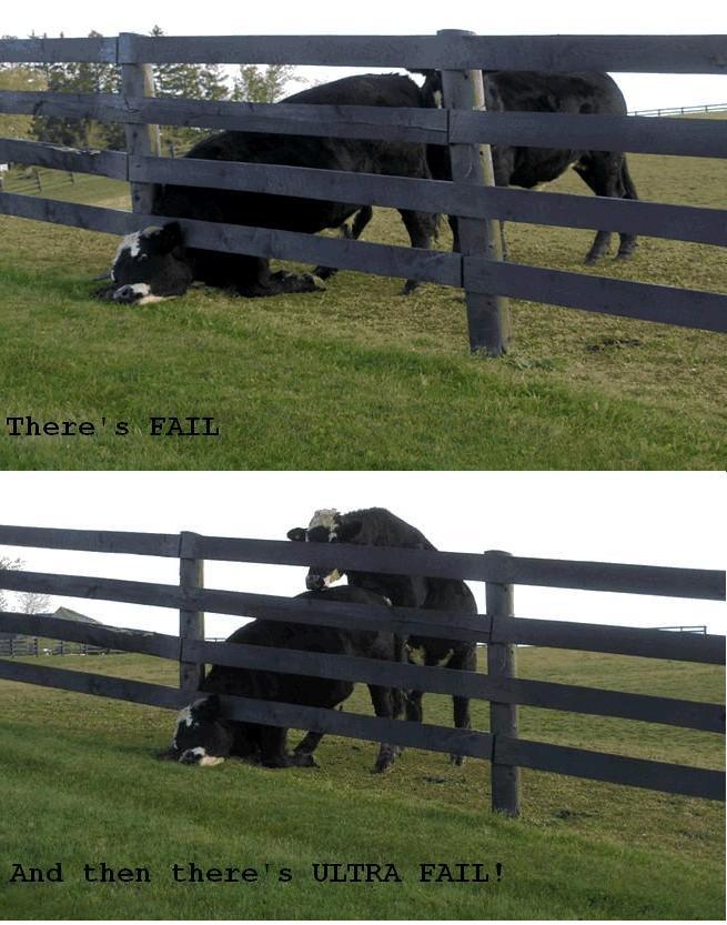 ultra cow fail