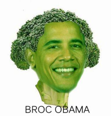 broc obama
